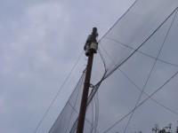 防球ネット補修工事 施工写真2