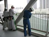 劣化建材落下防止ネット工事写真1
